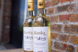 Blanka Wijn