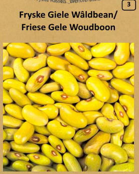 Friese Gele Woudboon