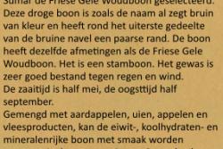 Friese Bruine Woudboon