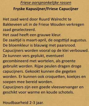 Friese Capucijner