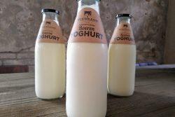 Westerleane Yoghurt