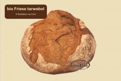 Friese Tarwe Bol (bio)