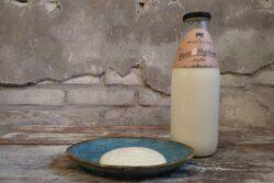 Vanille Yoghurt  Westerleane