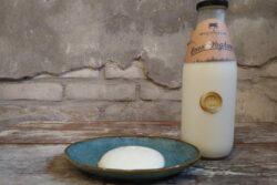 Yoghurt  Westerleane