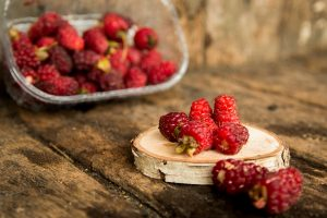 Tayberries-Natuurtuint-Hummelhûs-2